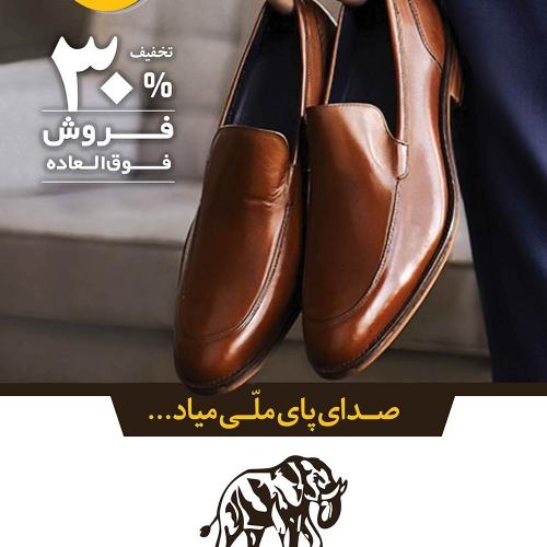 طراحی گرافیک استرابرد کفش ملی